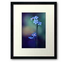 Cobalt Framed Print