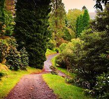 Pleasant Path. Benmore Botanical Garden. Scotland by JennyRainbow