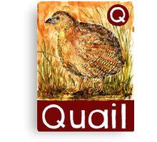 Q is for Quail Canvas Print