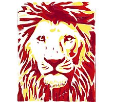 Lovely Lion Stencil (Warm) Photographic Print