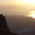 Dawn of the Dead Sea by Shaina Haynes
