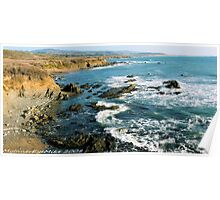 #563  California Coastline Poster