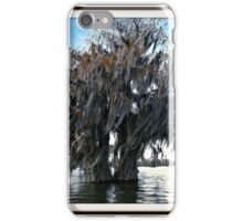 Double Cypress iPhone Case/Skin