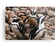 Penguin Pals Metal Print