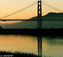 #565  San Francisco Morning  #1 by MyInnereyeMike