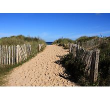 Chestnut Fence To The Beach Photographic Print