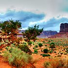Monument Valley Tree by Simon Hughes