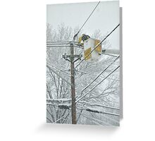Neither Sleet, Nor Hail, Nor Snow, Nor Storm... Greeting Card