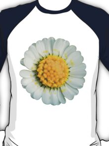 Big daisy  T-Shirt