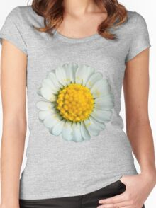Big daisy  Women's Fitted Scoop T-Shirt