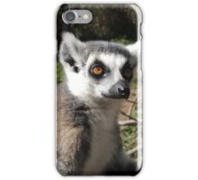 Furry Stripey Nomad iPhone Case/Skin
