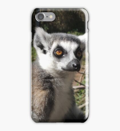 Furry Stripey Nomad iPhone Case/Skin