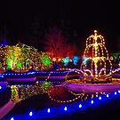 Christmas lights at Butchart Gardens by TJLewisPhoto
