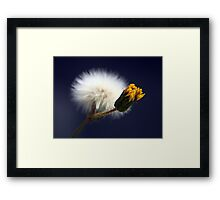 ©NS Winter Soldier IA Framed Print