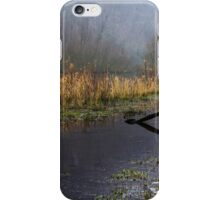 Frozen Shore on the River Wye iPhone Case/Skin