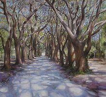 Avenue of the Oaks by HDPotwin