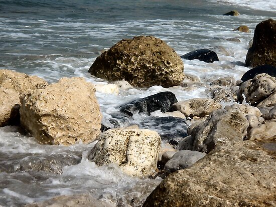Rocks and Tide by Pamela Jayne Smith