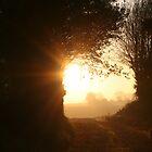 Sunrise over the Fields by Pamela Jayne Smith