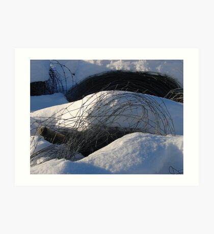 Fencing Wire in the Snow Art Print