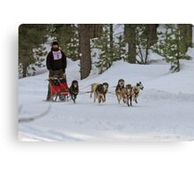 Sledding in Chemult Canvas Print