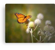 Spread Your Wings & Fly My Pretty Butterfly Metal Print