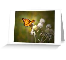 Spread Your Wings & Fly My Pretty Butterfly Greeting Card