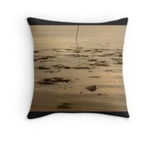 Ripples In The Evening Sun Throw Pillow