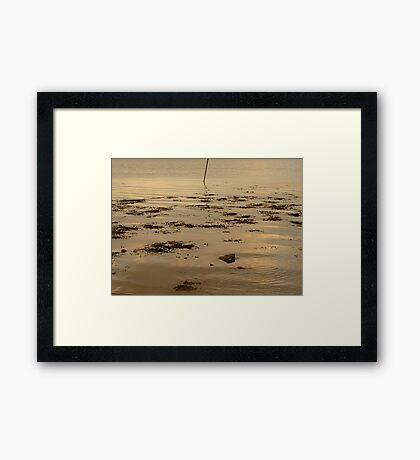 Ripples In The Evening Sun Framed Print