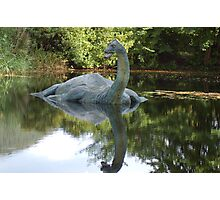 Is this really Nessy ????? Photographic Print