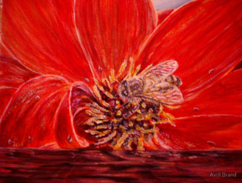 Busy Bee - Gouache by Avril Brand