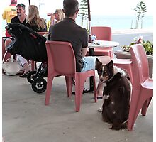 *I HOPE I'M GOING TO GET A DRINK!'* Somerton Park, Beach, Adelaide Photographic Print