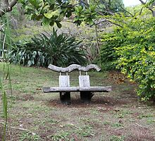 Bulky Bench in a Bush Garden by aussiebushstick