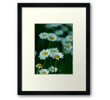 Dreaming in Color II.  Framed Print