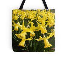 Daffodils 1 by Amber Feng Shui Art Tote Bag
