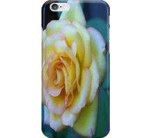 The Friendship Rose iPhone Case/Skin