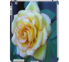 The Friendship Rose iPad Case/Skin