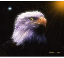 EAGLE LOOKOUT Photographic Print