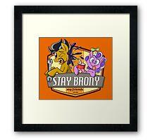 Stay Brony My Friends Garage Framed Print
