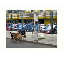 City Goats Art Print