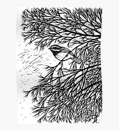 Black-throated Gray Warbler Poster