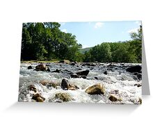 Water Wins! Greeting Card