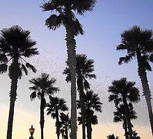 """Palm Skies by Lenora """"Slinky"""" Regan"""