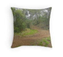 Winding Country Road Throw Pillow