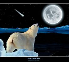 POLAR MOON  by Skye Ryan-Evans