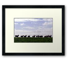 Flock Framed Print