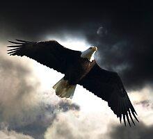 Soaring Eagle in Stormy Skies by Val  Brackenridge