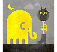 Elephant and Owl Photographic Print