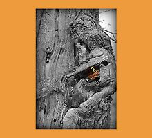 The Tree Dweller's Nightlight by Richard Johnson