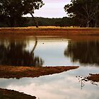 Summer at the Dam by Lozzar Landscape