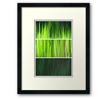 Organic - Triptych Framed Print